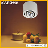 13W Energy Saving Surface Round LED Down Light Rotatable