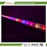 Luz LED Keisue crecer con conector impermeable