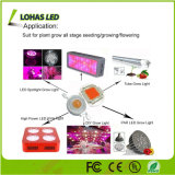 Epistar 9W 10W 15W 20W 25W COB Puce LED pour éclairage de projecteur