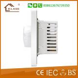 Interruttore chiaro elettrico 500W 1000W del regolatore della luminosità di nuovo disegno