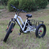 Lithium-Batterie-elektrisches Dreirad mit kleiner Ladung