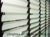 Windows와 외벽을%s 단단하게 한 미늘창 유리