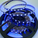 color flexible 60LEDs 4 de la tira 5050 de 24V RGBW LED en una tira de la viruta RGBW CCT LED