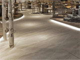 Hauptdekoration-Porzellan-Marmor-Fußboden-Wand-Fliese (SHA603)