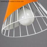Iluminación interior para la Decoración lámpara colgante colgante