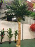 Высокое качество Искусственные растения и большой упор для рук из бамбука Gu-Bj-205-32b