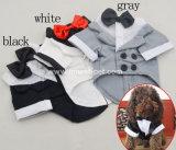 El perro hermoso de la ropa de la ropa del animal doméstico arropa el juego del perro