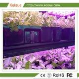 Keisue 열려있는 가구 Hydroponic 수직 농장