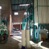 Moinho de farinha de trigo de sourcing máquinas a partir da China (50t)