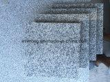 China mayorista de mosaico de granito gris claro del propietario de la Cantera