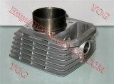 Compartimiento Skua-150 de Cilindro del cilindro de Moto