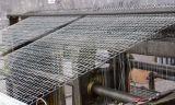 Galvanizzato catturando con la rete fabbricazione esagonale della rete metallica (AYW-006)