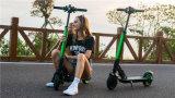 Rad-elektrischer Roller des Cer-anerkanntes Erwachsen-2 mit APP