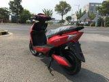 электрический самокат 500W для рынка Канады с системой Motorino педали
