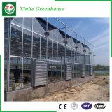 Ökonomisches Muti Überspannungs-Polycarbonat-grünes Haus mit Wasserkultursystem
