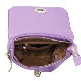 Mini modèles à la mode de sacs d'épaule de sacs d'emballage pour les collections de luxe des femmes