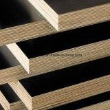 Schwarzes Gebäude-Furnierholz für Aufbau