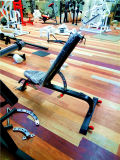 Equipamiento de gimnasio/equipos de gimnasio / banqueta regulable (SW28).