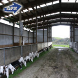 Einfaches Installations-Stahlkonstruktion-Aufbau-Geflügel bringen unter,/Schwein-Haus,/Vieh-Halle