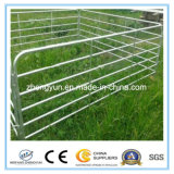 Energie beschichtete galvanisierte Stahlpferden-Hürde-Panels für Ranch (ISO9001)