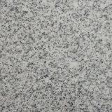 Granito grigio di superficie Polished per la pavimentazione