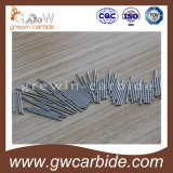 Carboneto de tungstênio Rod de Manufactural com alta qualidade e todos os tamanhos