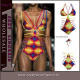 Swimwear Бикини Swimsuit оптового способа повелительниц сексуальный (T41720)