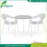 HPL décoratives blanc phénoliques tables à manger