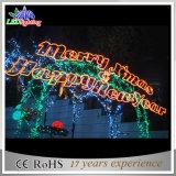 LED LED를 광고하는 옥외 크리스마스 나무 프레임은 빛을 써 넣는다