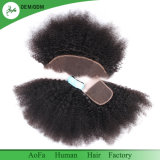 Onverwerkte Haar van de Hoogste Kwaliteit van de Kleur van het Haar van Afro het Krullende Maagdelijke Natuurlijke