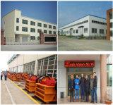 De Staaf die van de Reeks van de Magneet MW22-9065L/2 van de Fabrikant van China voor Verkoop opheffen