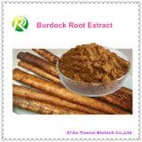 100%の自然なBurdockのルートエキスArctiin