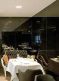 (SD-6002) Hotel moderno mobiliario de restaurante de la Oficina sofá de cuero