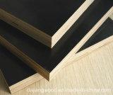 ضغط اثنان أوقات [4فت8فت] خشب رقائقيّ قابل للاستعمال تكرارا تجاريّة مع أسود/[بروون] فيلم لأنّ بناء