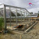 Structure en acier maison avec un ensemble complet de l'équipement automatique dans le bétail