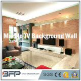 자연적인 대리석 지면 도와 텔레비젼 배경 벽 큰 메달 또는 패턴 또는 모자이크 또는 새기기 돌