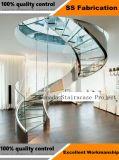 内部の薄板にされたガラスの螺旋階段/ガラス螺線形階段
