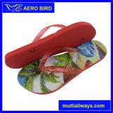 Sandalo del PE di stampa della spiaggia di estate con la cinghia della gelatina per la donna