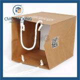 Sac de papier de luxe personnalisé 2017 pour toiles et boutiques (prix de vente en usine) (DM-GPBB-046)