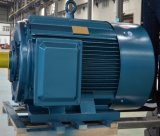 Высокая Effiency наименьший объем электродвигатель постоянного магнита