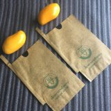 Fruit Industry Uses Brown Carbon Coated Kraft Paper Mango Growing Cover Bag