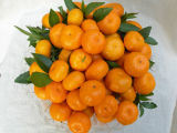 Mandarine fraîche de bébé de Nan Feng