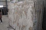 壁パネルまたは正面のためのさまざまな大理石かオニックスまたはTravertineまたは石灰岩または花こう岩またはスレートのタイルおよび平板