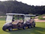 Mini-Golf Cart eléctrico