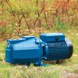 Pomp van het Water van de Draad 0.5HP van het Koper van 100% Js60 de Straal Elektrische