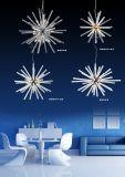 Heißes modernes hängendes Licht des Verkaufs-LED (AQ-66043/32W)