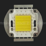 20W LED integrado, LED COB, fuente de luz de 20W