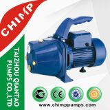 China Top suministrador Auto Priming uso doméstico Jet Clean Water Pump for Russia
