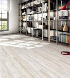 Mattonelle 600*600mm della porcellana lustrate Matt di Foshan per il pavimento e la parete (1DN61604)