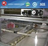 ナイジェリアの養鶏場のためのSoncapの鶏電池の層のケージ